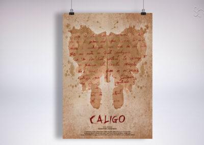 LOCANDINA CALIGO